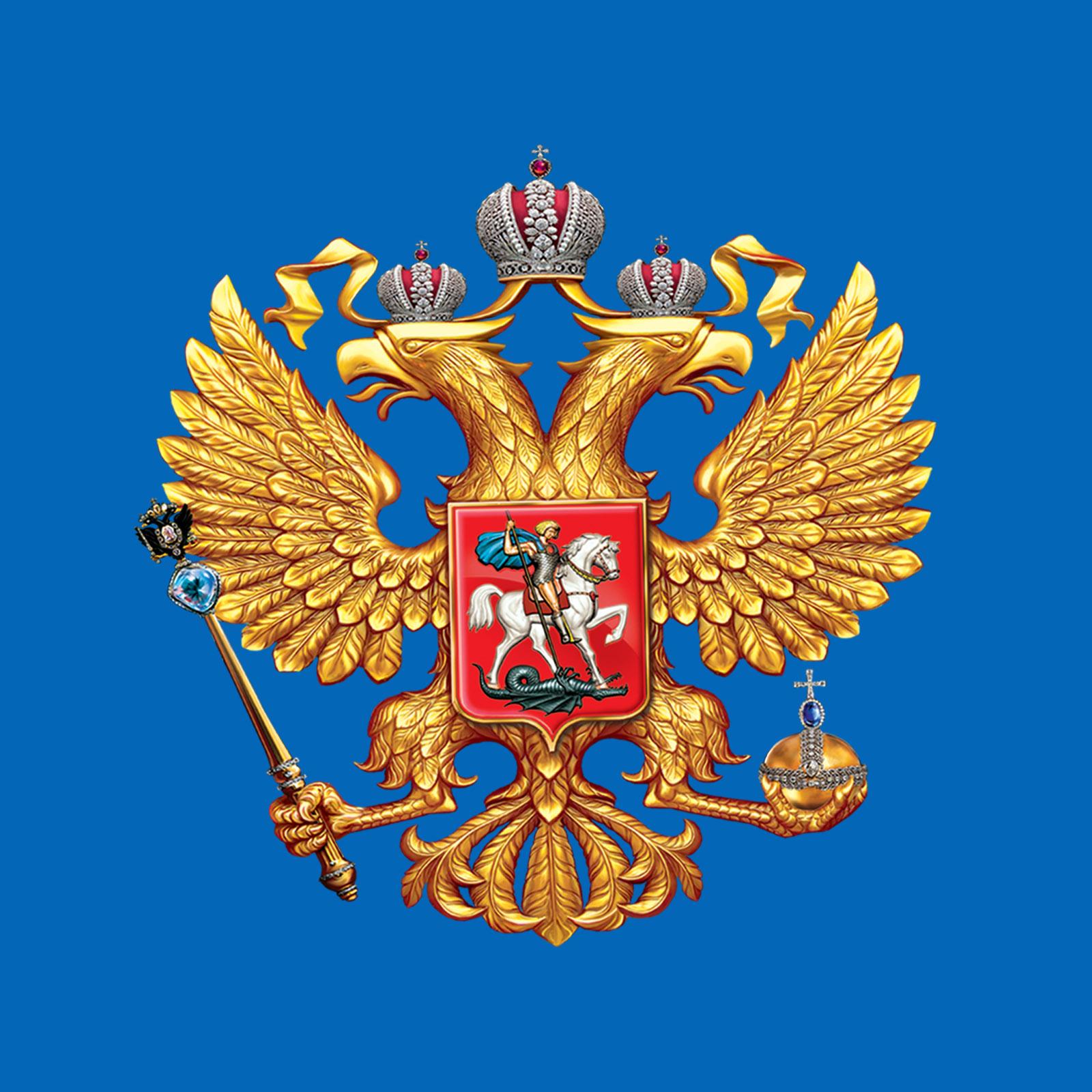 Комфортная синяя футболка Россия
