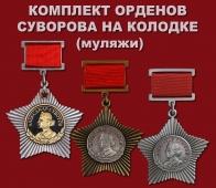 "Комплект ""Орден Суворова на колодке"""