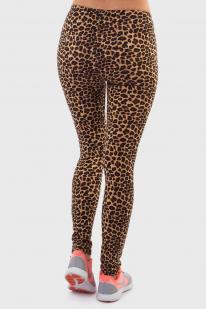Легендарные леопардовые лосины QED London.