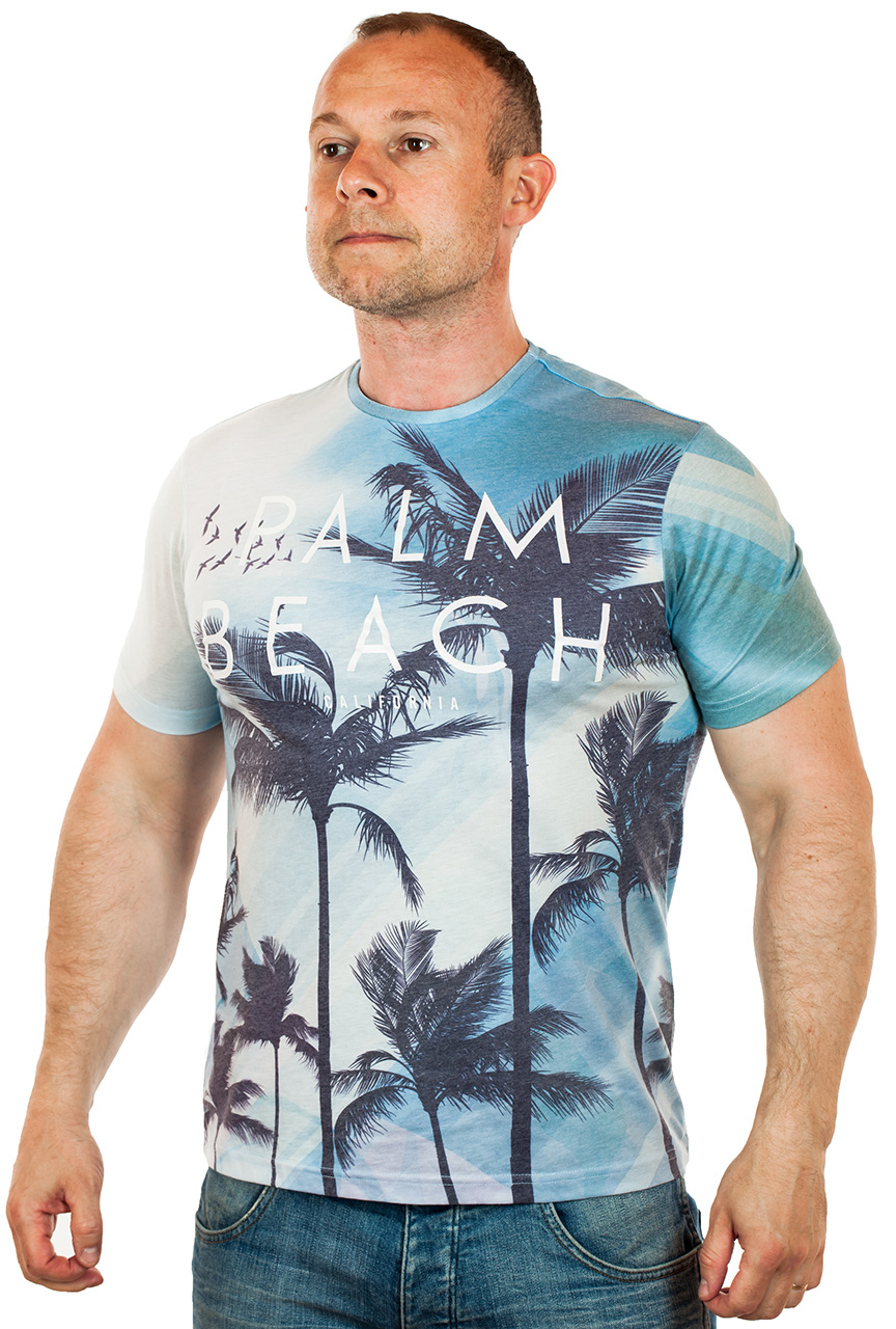 Пляжная мужская футболка по цене 599 рублей