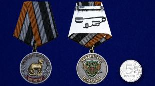 Медаль Меткий выстрел Горностай - сравнительный вид