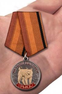 Медаль Меткий выстрел Рысь - вид на ладони
