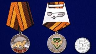 Медаль охотника Соболь (Меткий выстрел) - сравнительный вид