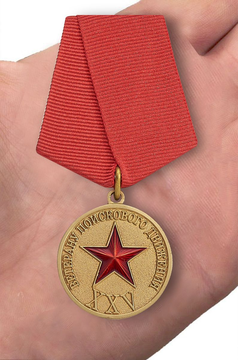 Медаль Ветеран поискового движения СНГ - вид на ладони