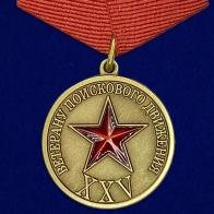 Медаль поискового движения (Ветеран)