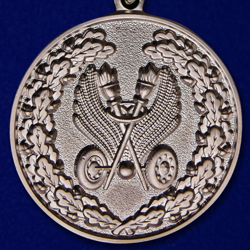 """Медаль """"За усердие в обеспечении безопасности дорожного движения"""" МО РФ - аверс"""