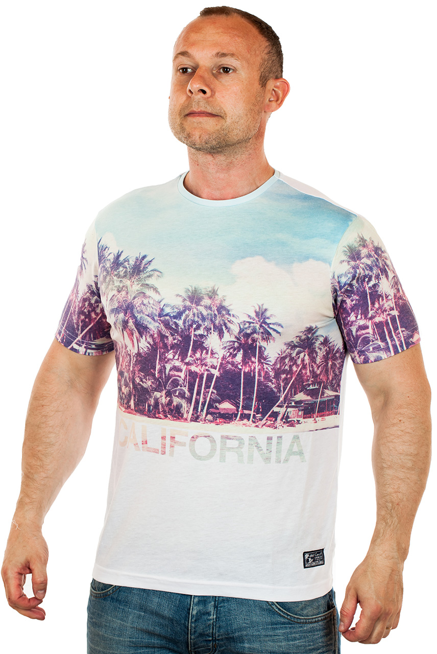 Купить легкую летнюю мужскую футболку Калифорния