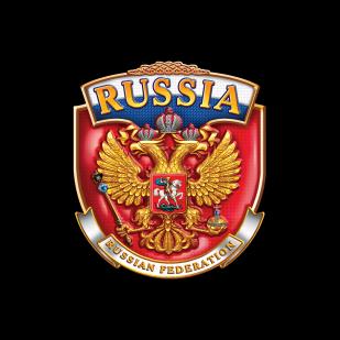 Мужская футболка с гербом России - купить с доставкой