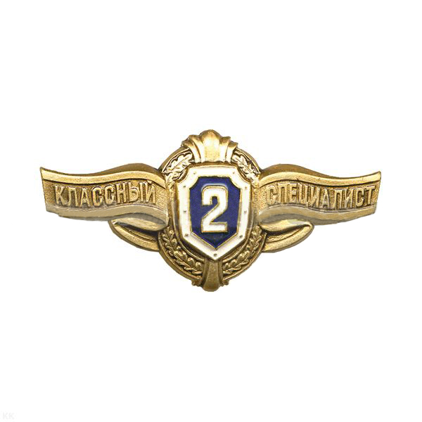Нагрудной знак ВС России Классность рядового состава 2 класс