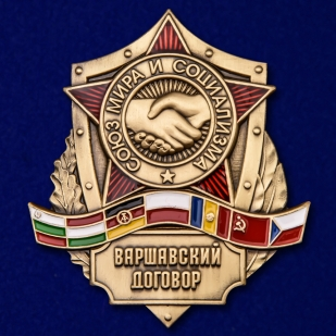 Нагрудный латунный знак Варшавский договор - общий вид