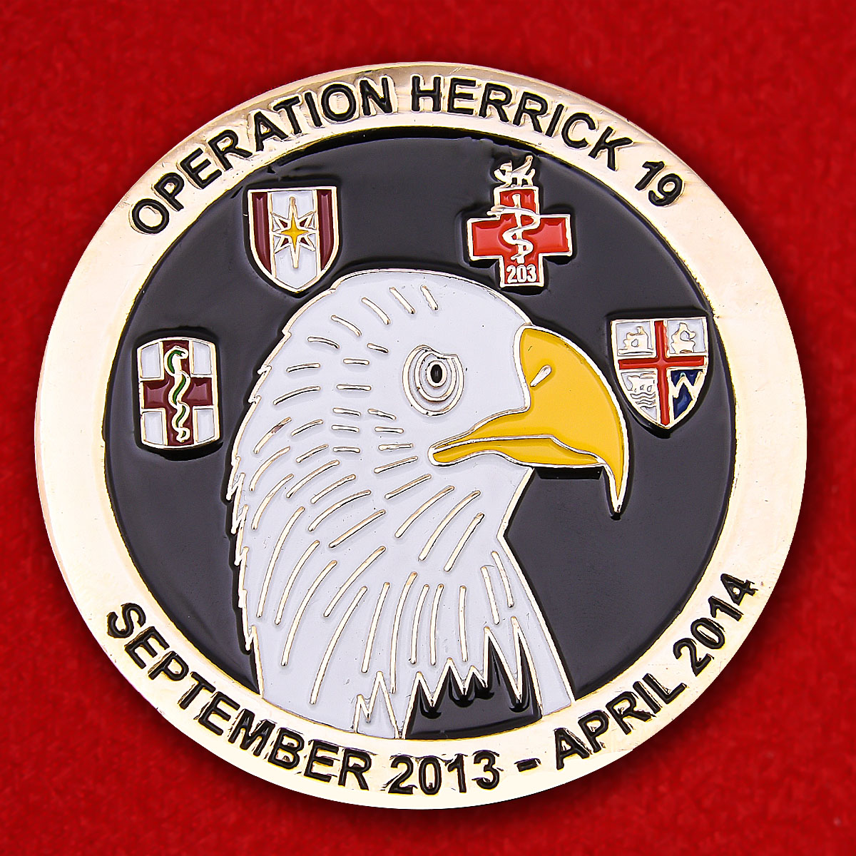 NATO Bastion Hospital Helmand, Afghanistan Operation Herrick 19 Challenge Coin