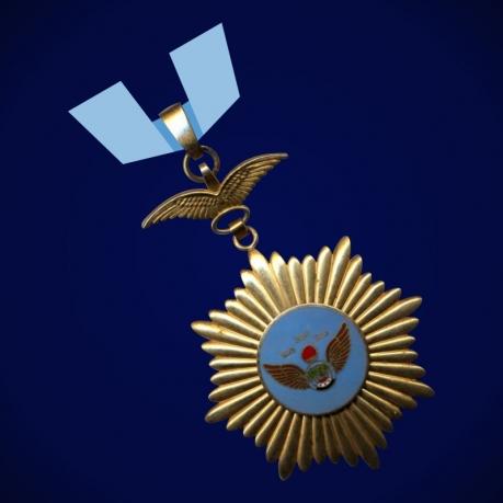 Орден ВВС, 1 класс (Ирак)