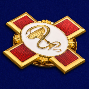 "Орден ""За заслуги в медицине"" в футляре из бархатистого флока - общий вид"