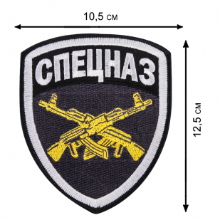 Особая мужская толстовка с эмблемой Спецназа.