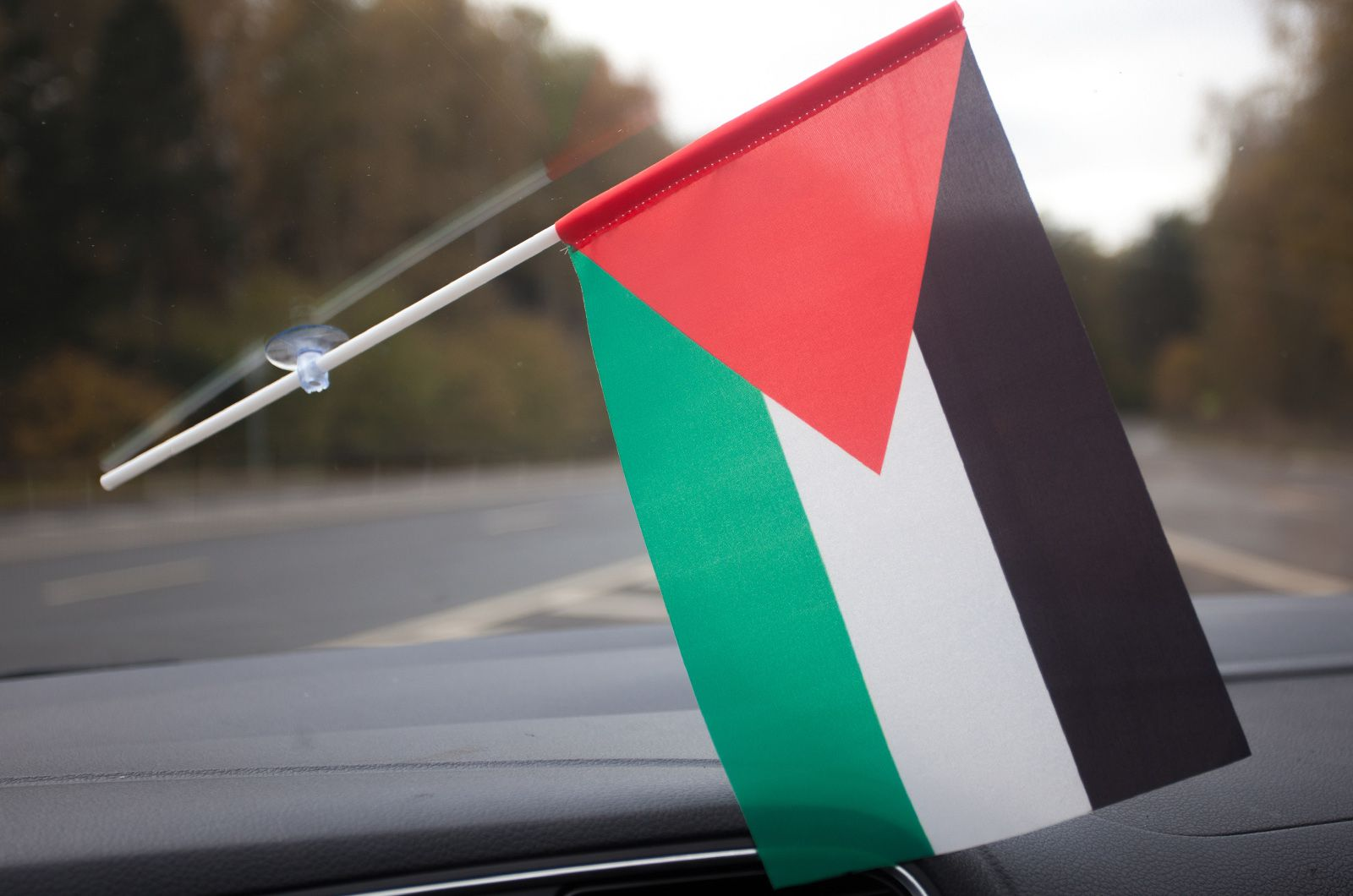 Палестинский флажок в машину