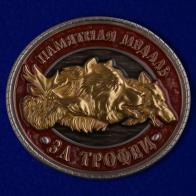 "Памятная медаль ""За трофеи"""