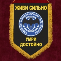 Памятный вымпел Отдельный разведывательный полк спецназа