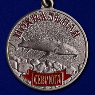 Похвальная медаль Севрюга