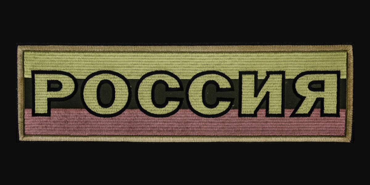 Серьезная толстовка с полевым шевроном РОССИЯ.
