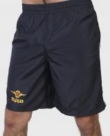 Имиджевые мужские шорты с золотой вышивкой ВДВ