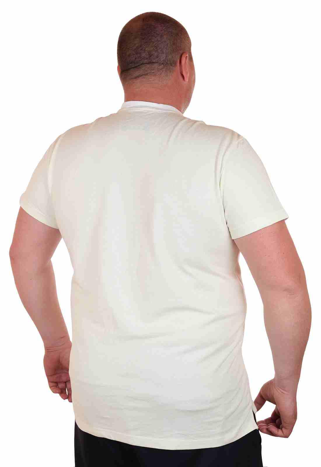 Дизайнерская футболка от Ralph Lauren (США)-сзади
