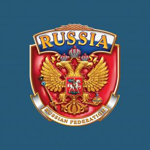 Стильная футболка с эмблемой RUSSIA.
