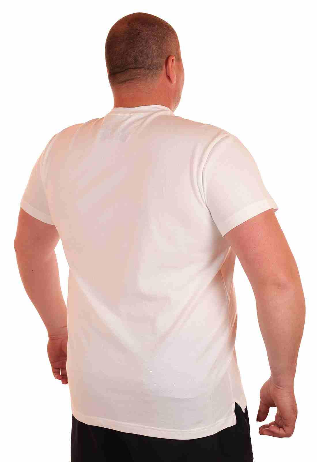 Стильная мужская футболка от американского бренда Ralph Lauren-сзади