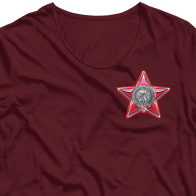 Термонаклейка 100 лет Советской Армии и Флота.