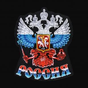 Мужская толстовка с триколором-гербом России.