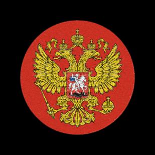 Патриотическая мужская толстовка с гербом Российской Федерации.