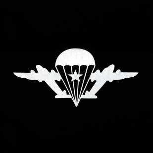 Толстовка «ВДВ Крылья»