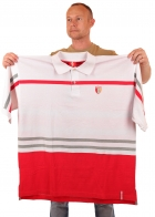 Трендовая мужская футболка поло от Bare Fox (батал)