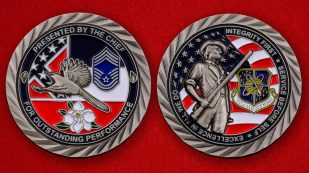 US Air Force 172nd Airlift Wing Challenge Coin - both sides