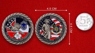 US Air Force 172nd Airlift Wing Challenge Coin - linear size