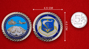 US Air Force 446th Maintenance Group Challenge Coin - linear size