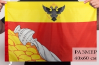 Воронежский флаг 40x60 см