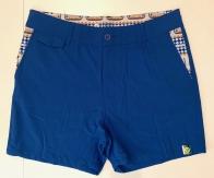 Яркие летние мужские шорты VAST