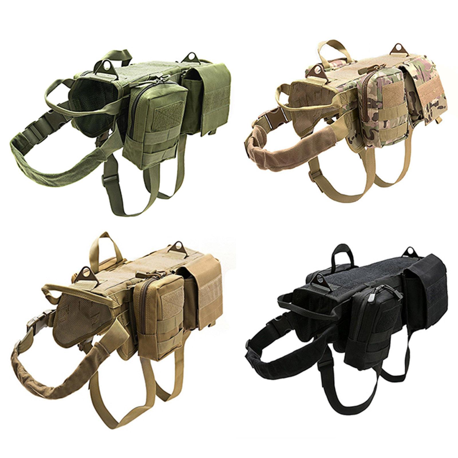 Снаряжение для охотничьих собак купить в СПб