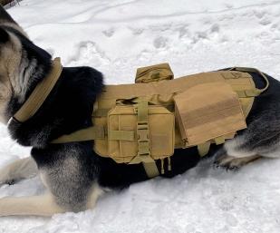 Жилет для охотничьих собак (хаки-песок)