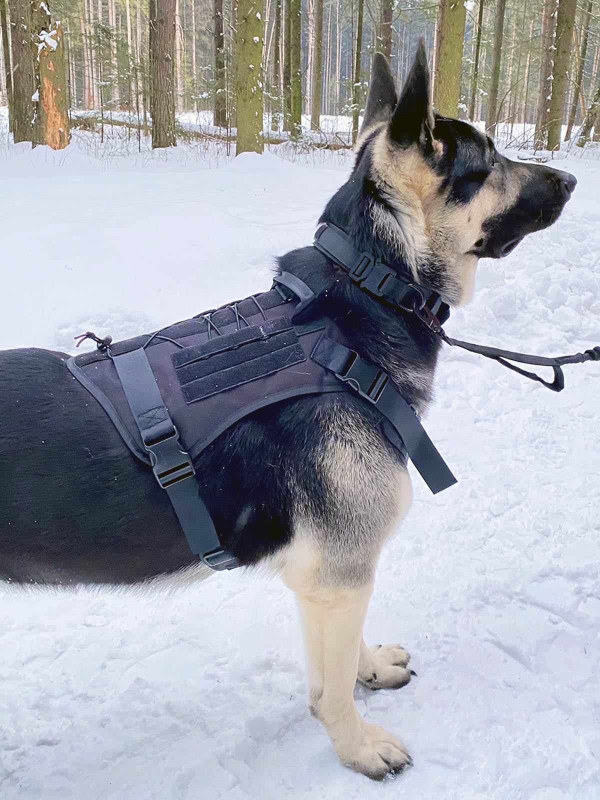 Жилет специального назначения для собак K9 Tactical (черный)