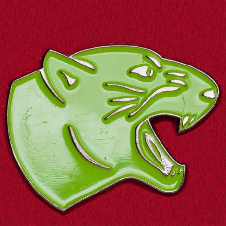 Значок Боевой кот для фанатов «Хи-Мен и властелины вселенной»