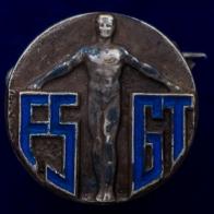 """Значок """"FSGT"""""""