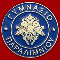 """Значок """"Гимназия в Паралимни"""""""
