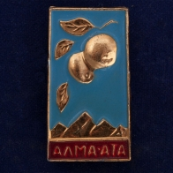 "Значок ""Город Алма-Ата"""