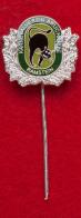 Значок клуба любителей карнавалов в городе Рамштайн-Мизенбах, Германия