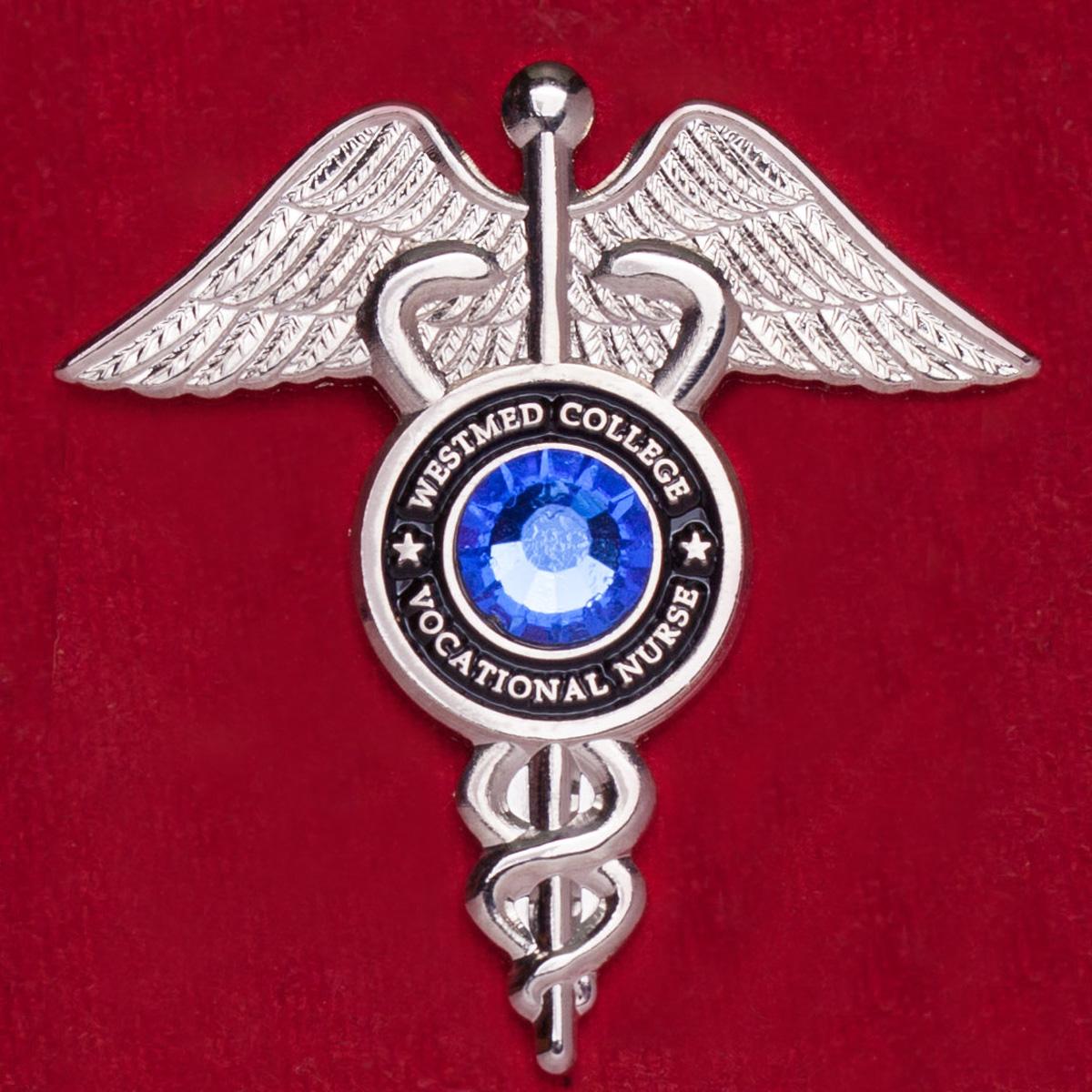 "Значок ""Лучшей медсестре"" колледжа Westmed, Сан-Хосе"