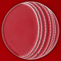 """Значок """"Мяч крикетный"""""""