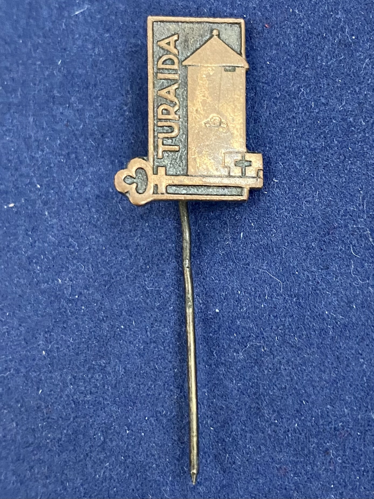 Значок на иголке Turaida