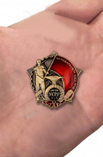 Мини-копия Ордена Трудового Красного Знамени Украинской ССР с доставкой