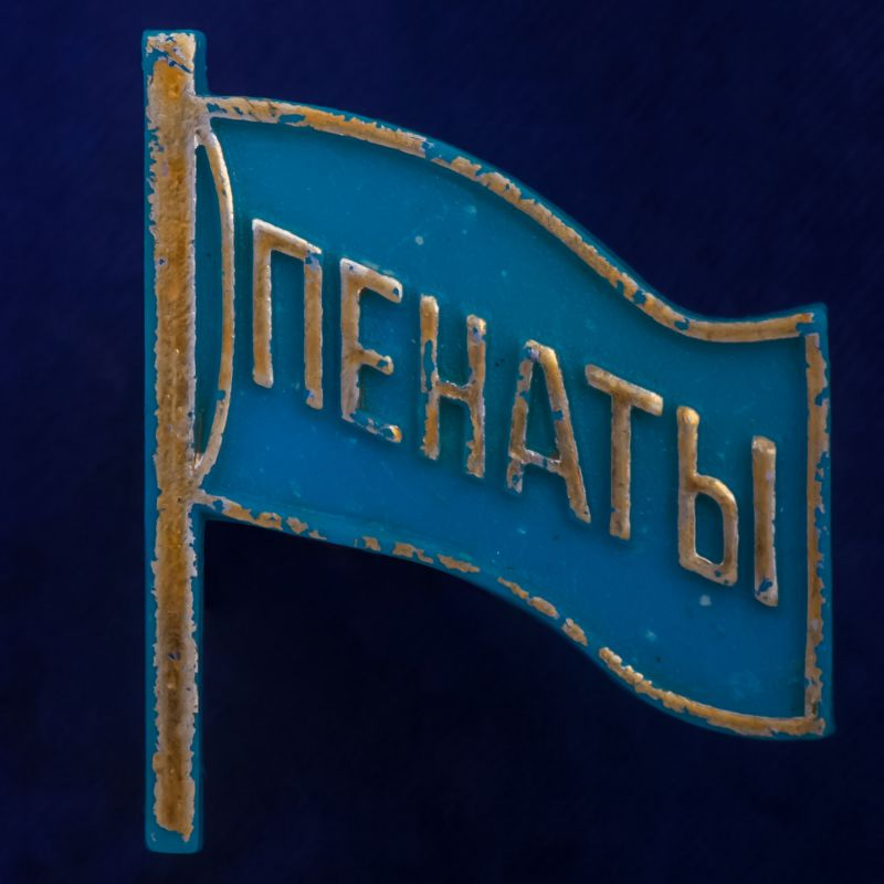 """Значок СССР """"Пенаты"""""""